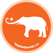 "elephantjournal.com ""elephant journal"" magazine logo waylon lewis"