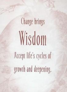 changewisdom