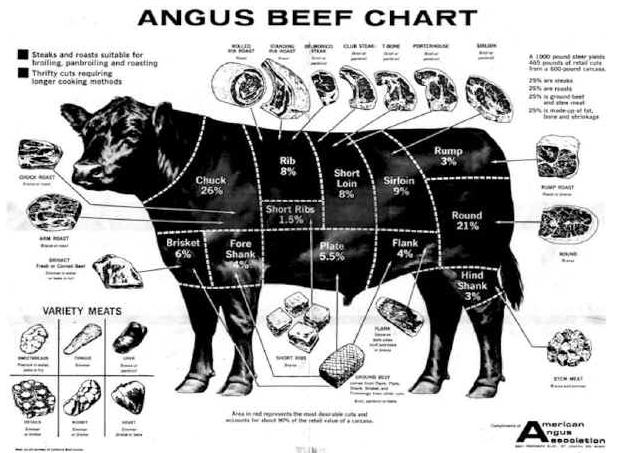 cow meat burger vegan flesh