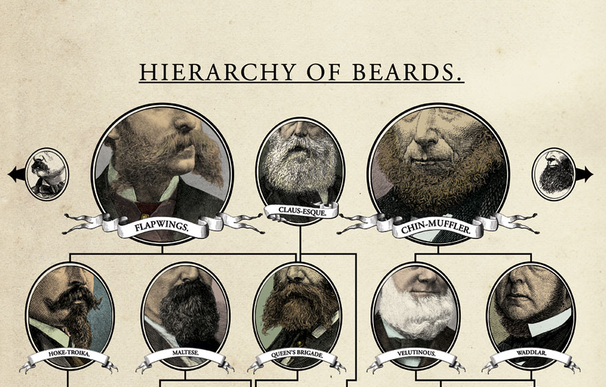 wondermark hierarchy of beards