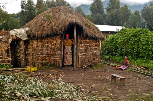 Raising Rabbits And Roofs In Rwanda Breanna Draxler
