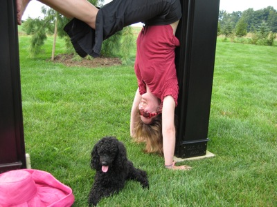 Brooks Hall handstand with doggie