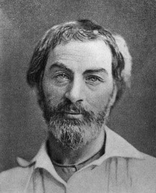 walt whitman's tantric gaze