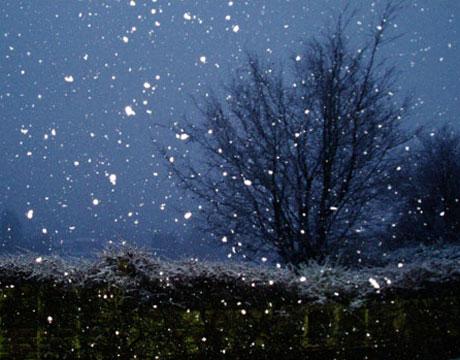 winter-snow-war-lg