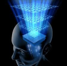 brain conscious