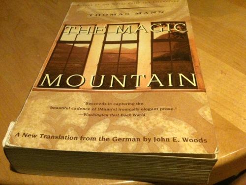 The Magic Mountain, by Thomas Mann