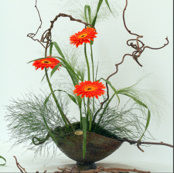 ikebana, flower arranging