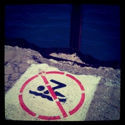No Diving or Swimming