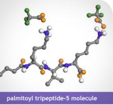 anti-scar peptide molecule