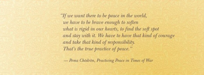 pema maitri quote buddhism