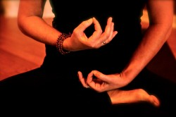 Bhakti's Hands