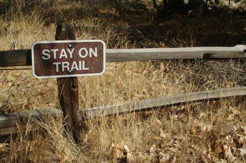 stay on trail-Karen Fatt