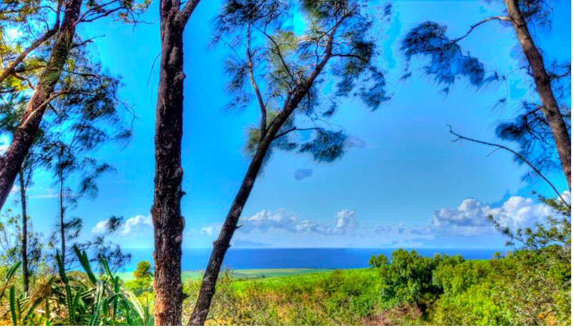 lumeria maui yoga retreat travel hawaii
