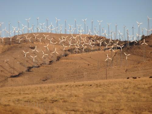 Wind Farm - Eastern California 2