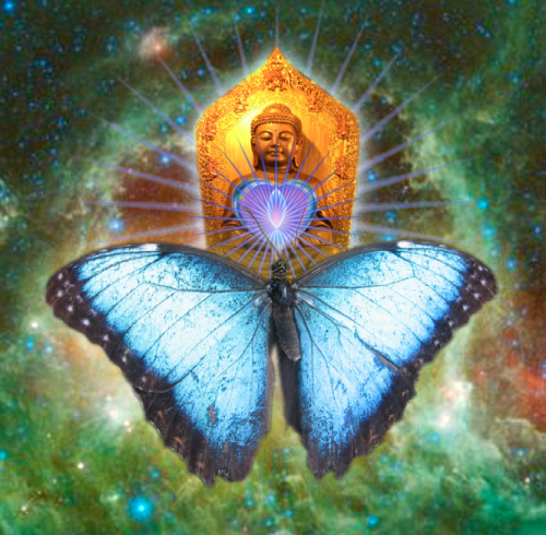ButterflyBuddha, courtesy of Jan Salerno