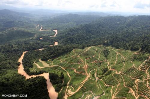 http://news.mongabay.com/2012/0822-hance-ecological-overshoot.html
