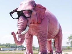 GiantElephant2
