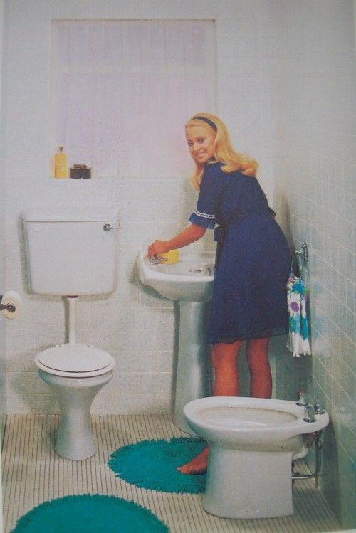 Cleaning the Bathroom 1970's Style