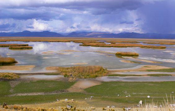 http://news.mongabay.com/2012/0312-juninrail-pod.html