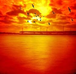 http://www.flickr.com/photos/dionnehartnett/7428818296/sizes/m/in/photostream/