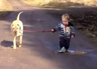 Best Friends A Kid A Dog And A Puddle