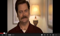 Swanalogues: The Scintillating Art of Ron Swanson