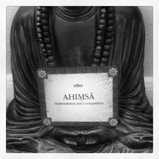 Ahimsa - non judgement, non violence, non harm, acceptance