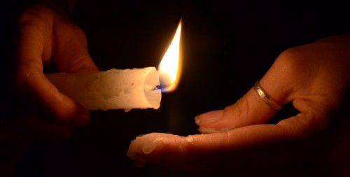 candlepaws (1)