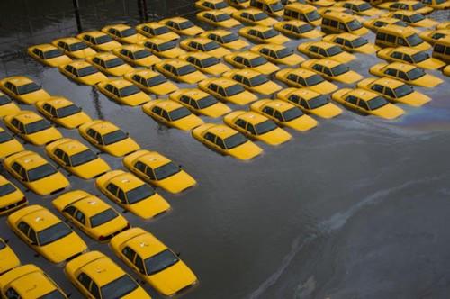 sandy_taxis1