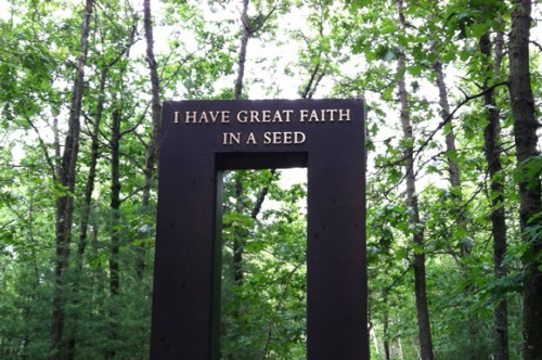 Walden Pond ~ Concord, Massachusetts