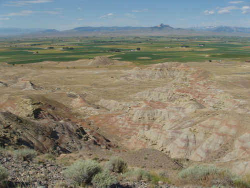 View of Bighorn Basin in Wyoming, showing the sediments which scientists drill through. Photo courtesy of Phillip Jardine.