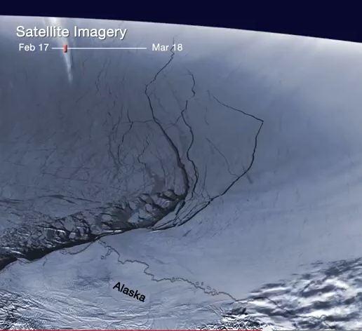 sea ice screen shot