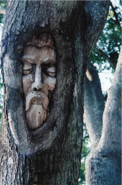 treespirit_t658