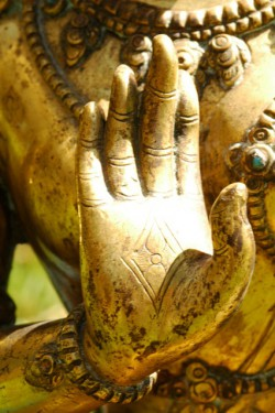 Tara's hand