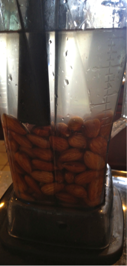 vitamix blend almonds n water