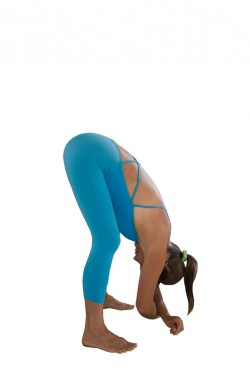 YogAlign standing forward bend