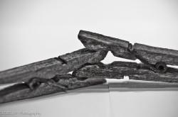 bdsm clothespins