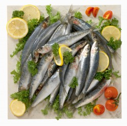 heavy metals sardines omega 3 image