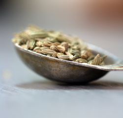 fennel seeds 1