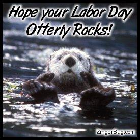 labor_day_sea_otter
