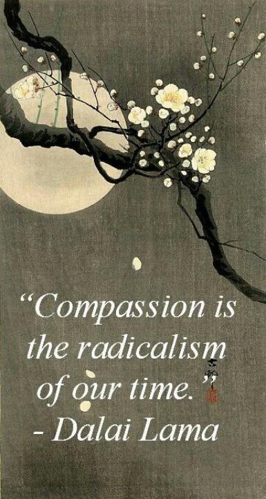 compassionradicalism