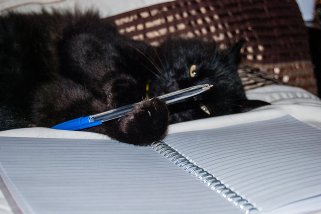 Cats & Their Writers: 15 Quotes. ~ Laura Ashworth ...