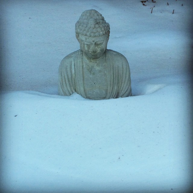 buddha shambhala snow