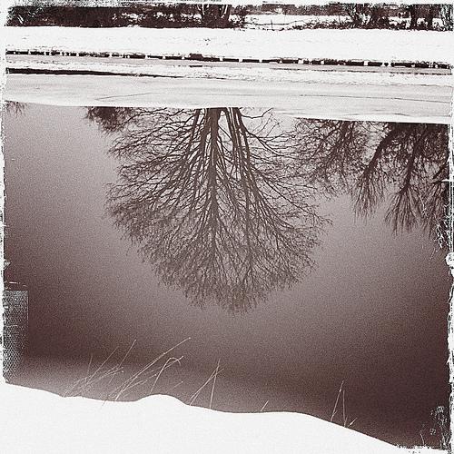 Winter Cambridge