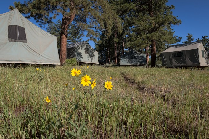 SMC Tents & Lodging O'Hern - Web1
