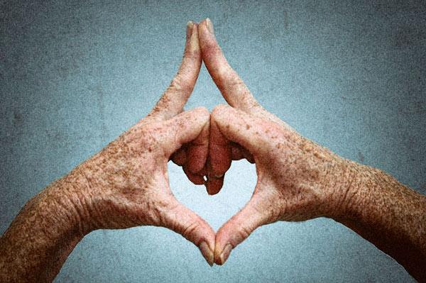 heart mudra hands color web