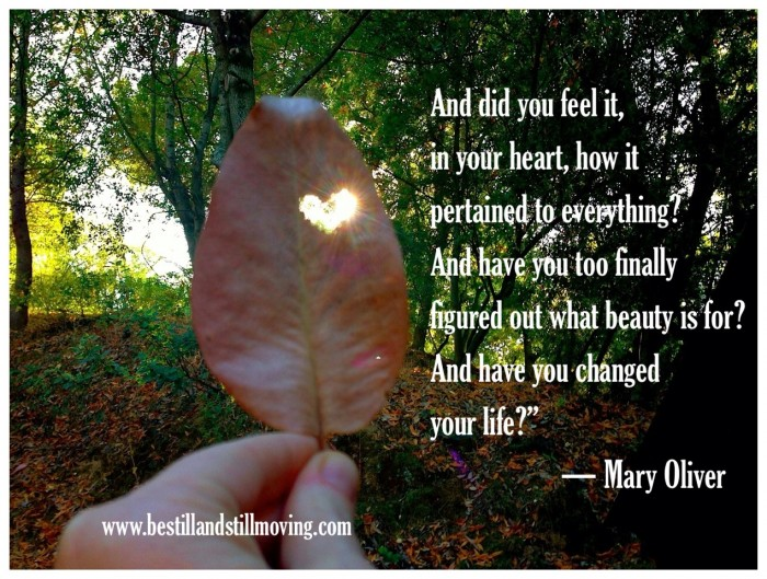 beauty quote Mary Oliver