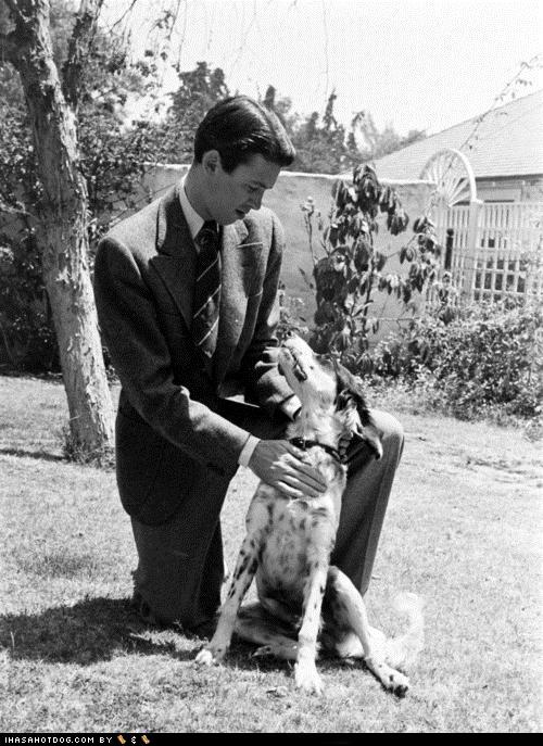 dog jimmy stewart sweet heartwarming