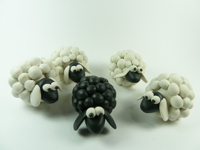 Black Sheep Flickr CC