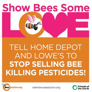 valentine's day Show Bees Some Love FB  neonicotinoids